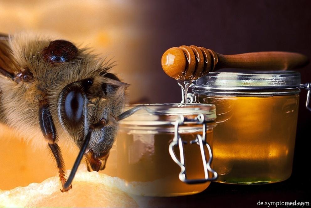 Honig und weitere Bienenprodukte