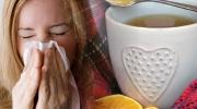 Grippeepidemien