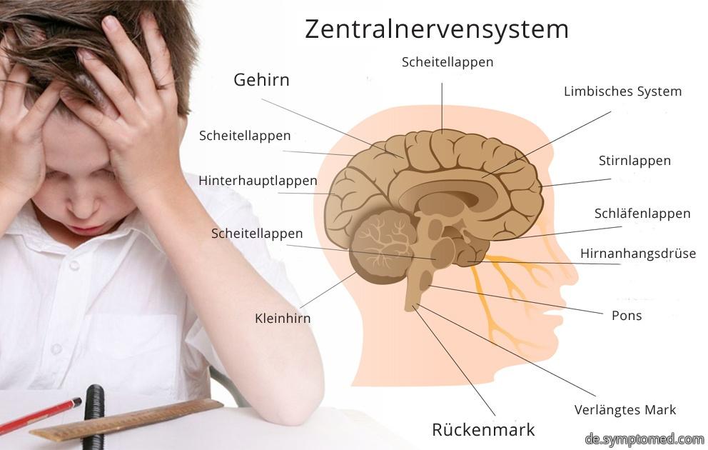 Hyperkinetische Störung