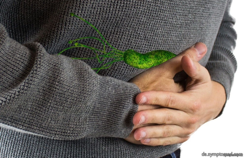 Helicobacter pylori im Bauch