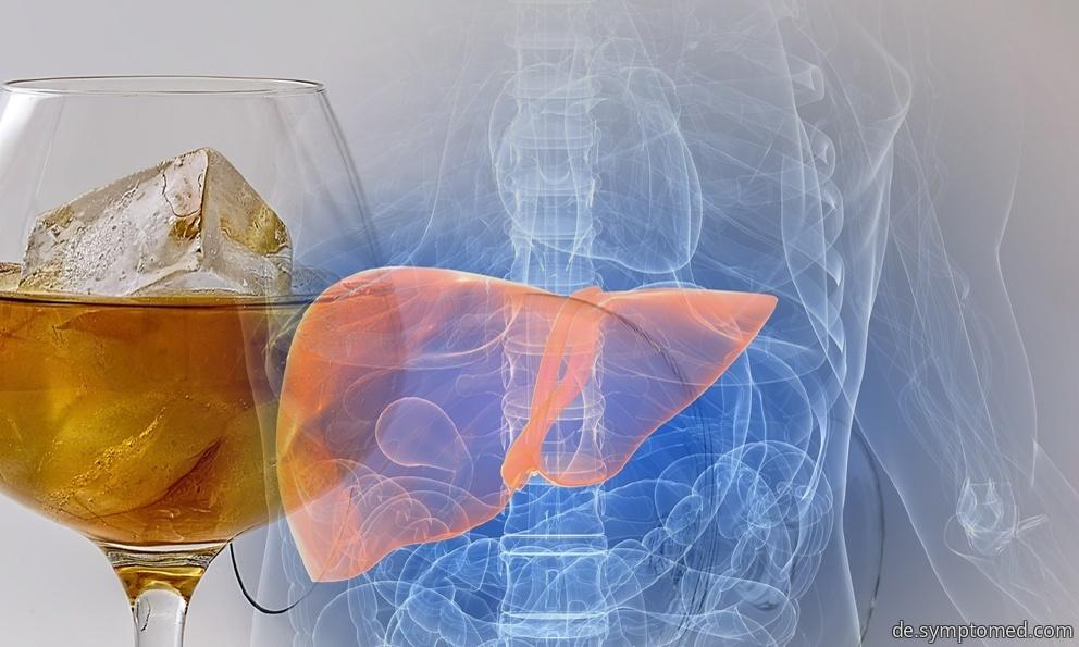 Durch übermäßige Alkoholanwendung beschädigte Leber
