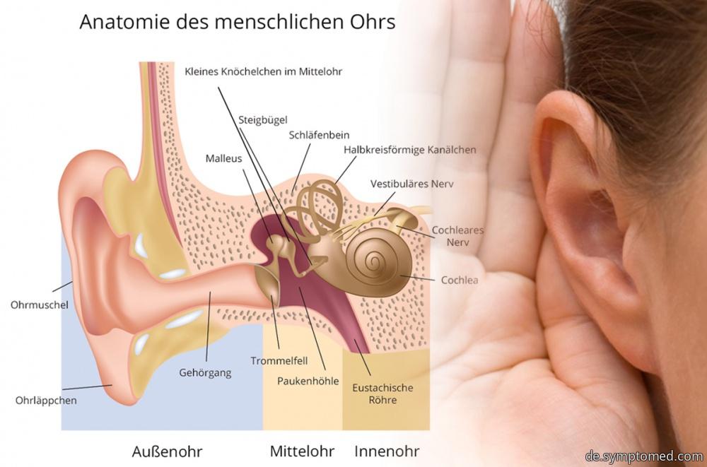 Menière-Krankheit - Symptome