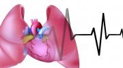 Wie das Herzversagen erkennen